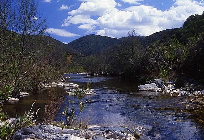 Parque Natural de Cardeña-Montoro