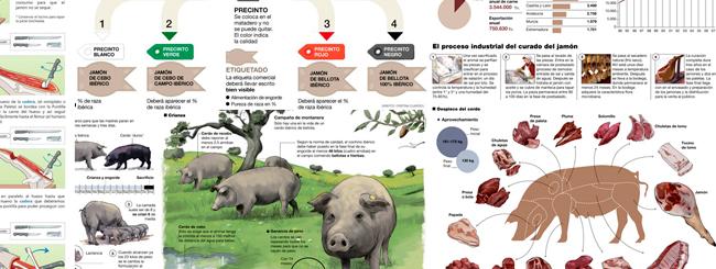 20 infografías que te ayudarán a conocer todo sobre el jamón y el cerdo ibérico